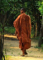 A monk walking along a nature path with trees on each side. The monk is covered in an orange robe. The photo was taken by Sadaham Yathra from Pexels