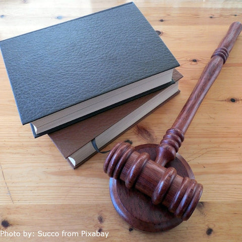 Two rules books, one black and one brown placed on a table next to a courtroom hammer with the blue book placed on top of the brown one.