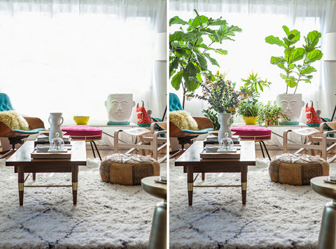 Before and After plants added to home decor