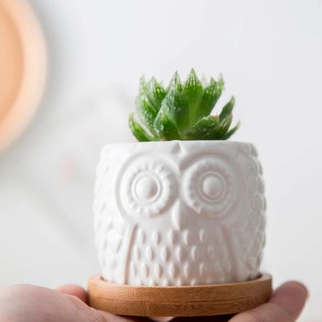 White Owl Planter
