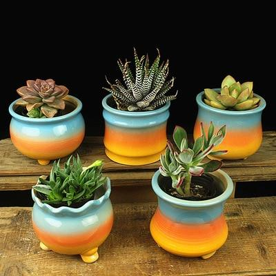 Sunset Pots