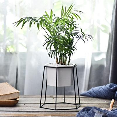 Hexagonal Planter & Stand