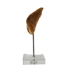 Load image into Gallery viewer, Gold Sea Life Round Coral Finial on Lucite Base
