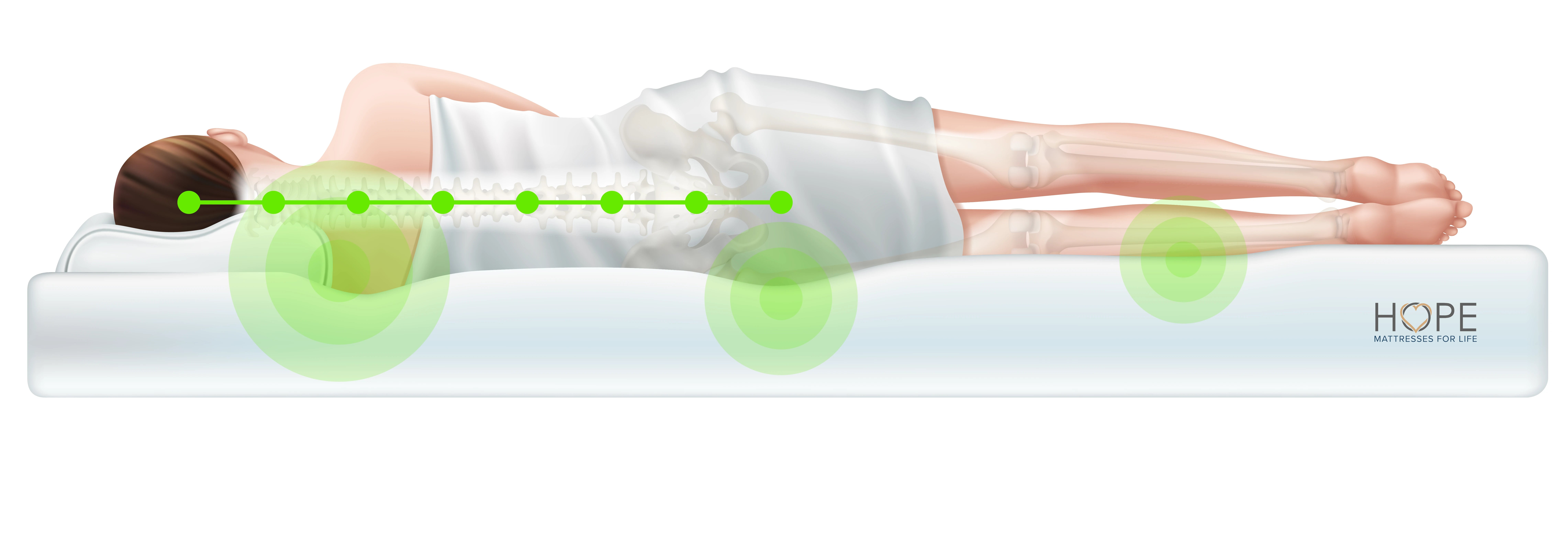 <Spinal alignment, great support, hope mattress, cradle your pressure points, comfortable>