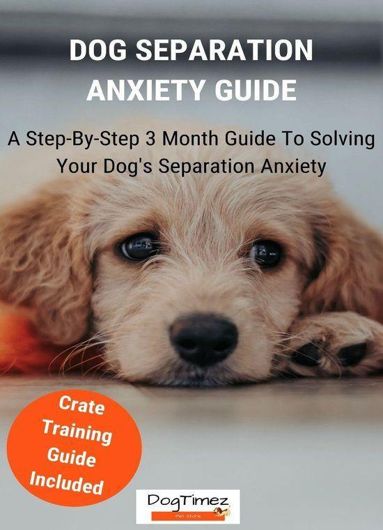 DogTimez eBook: Solve Your Dog's Separation Anxiety in 3 Months - DogTimez