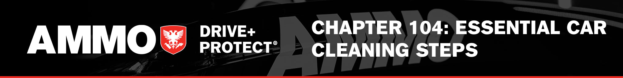 CHAPTER 104: ESSENTIAL CAR CLEANING STEPS