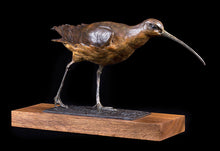 Load image into Gallery viewer, 'Curlew' by David Cemmick
