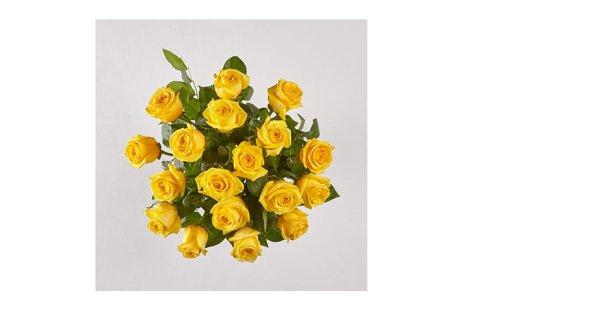 Long Stem Yellow Rose Bouquet - Image 1 Of 4