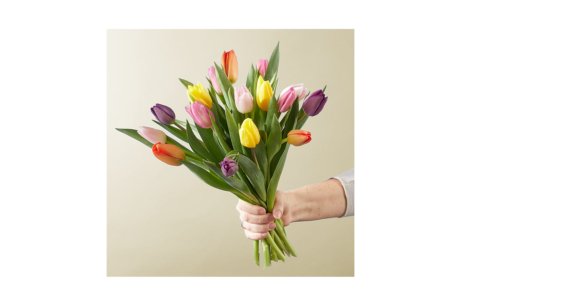 Mixed Tulip Bouquet - Image 1 Of 2