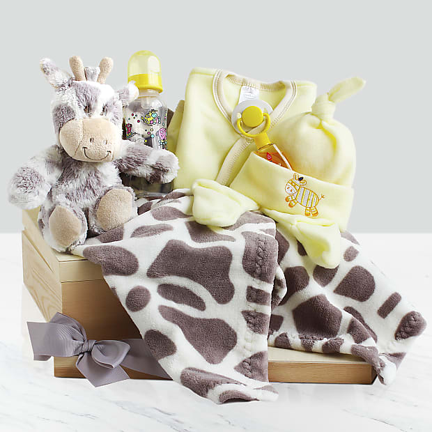 Welcome Baby Gift