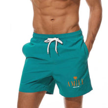 Load image into Gallery viewer, Dolphins Miami Swim Shorts for men