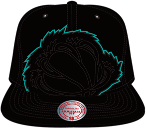 Vancouver Grizzlies Cropped Snapback