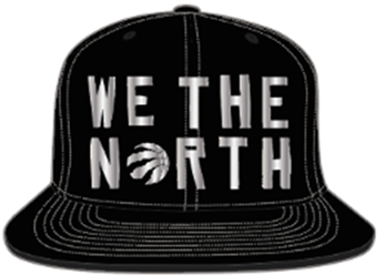 Toronto Raptors We The North Black/Silver Snapback
