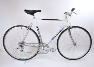 Flanders white 54cm bike drive side