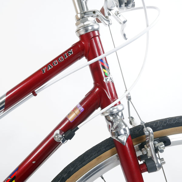 Faggin red step through bike head tube