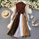 Sheer Spliced Elegant Dress
