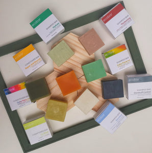 Ecobar range of shampoo, conditioner, bath and face bars.