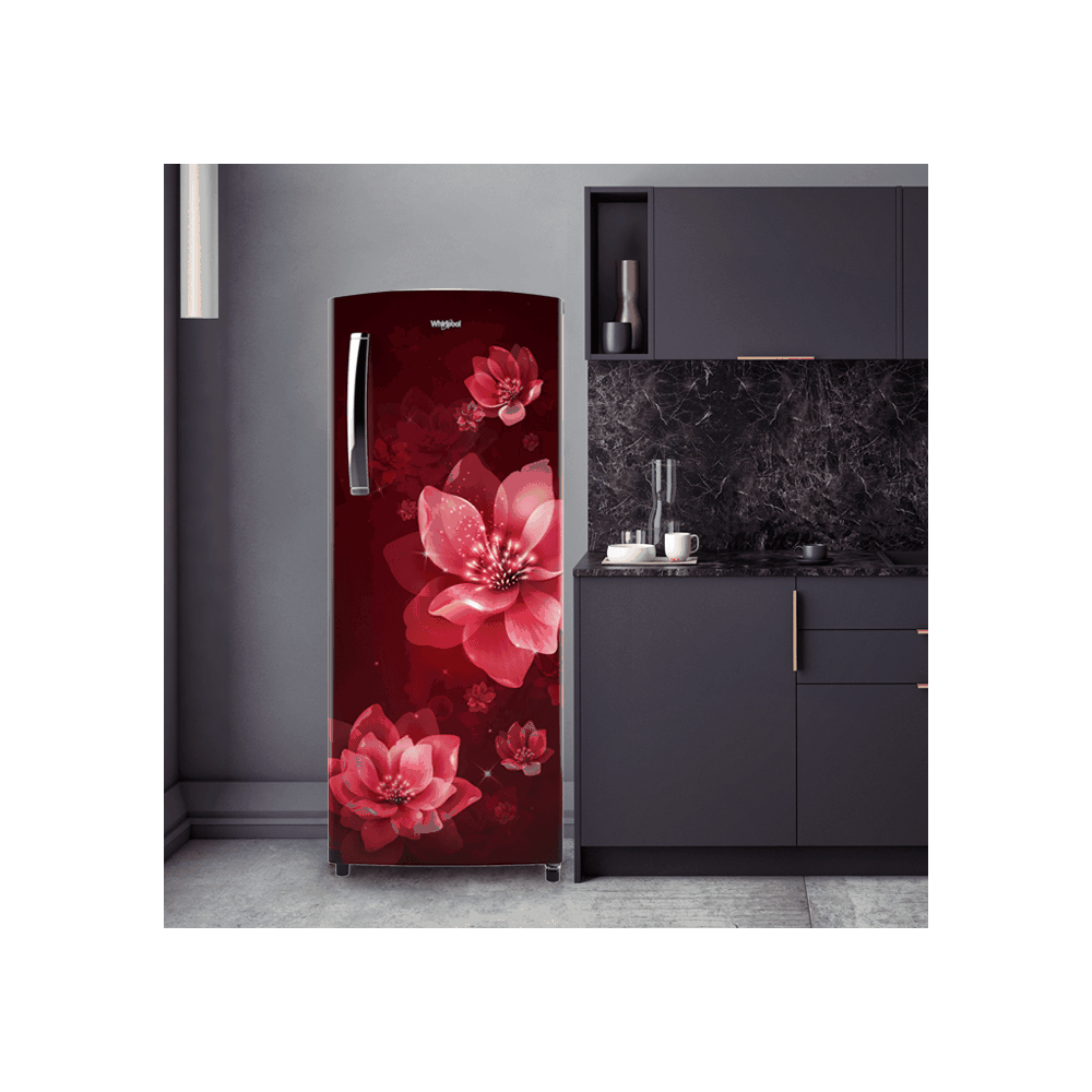 Whirlpool 215L Icemagic Pro Single Door Refrigerator ( 71850 , 3 Star, 230 IMPRO PRM , Wine Mulia )