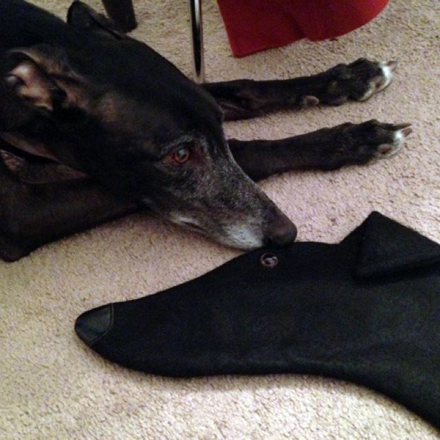 Greyhound Christmas dog stockings are perfect for stuffing toys and treats into to spoil your fur baby for Christmas, or whatever holiday you celebrate!