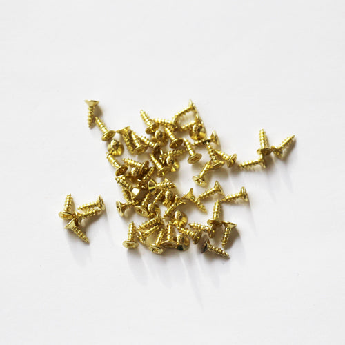 E141-1F - 1/4'' # 1 Brass Flat Head Philips Screw (100 pack)