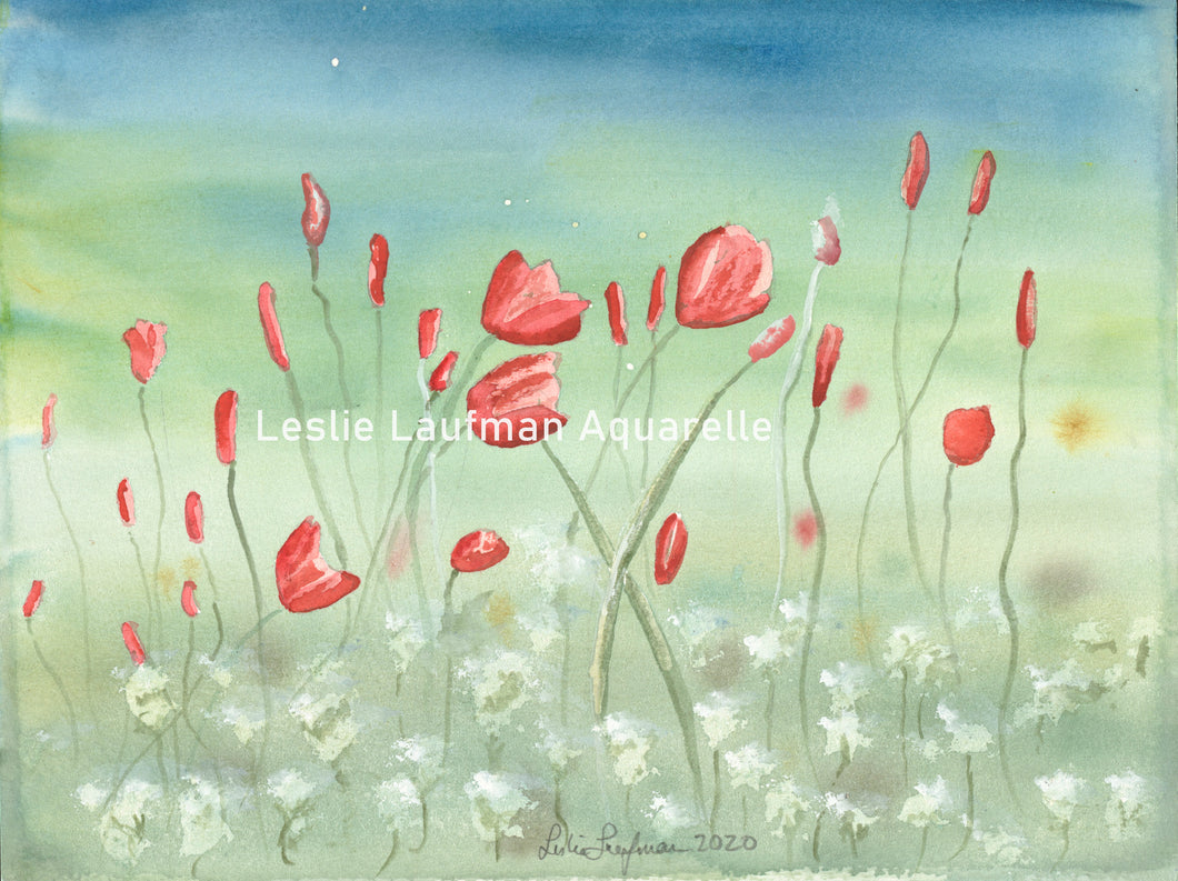 ZZ Val's Spring Poppies print Inspiration: Photo by Val Dyer