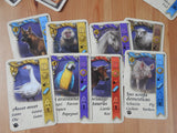View of 8 of the pet cards included.