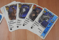 Close-up view of 4 of the pet cards included - the hare, falcon, cat and donkey.