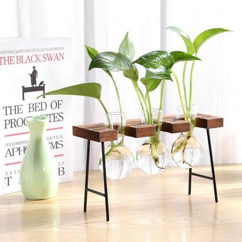 Frame Glass Vase Tabletop Terrarium Hydroponics Plant Vases Bonsai Transparent Flower Pot with Wooden Tray Home Decor - Yesy All Goods
