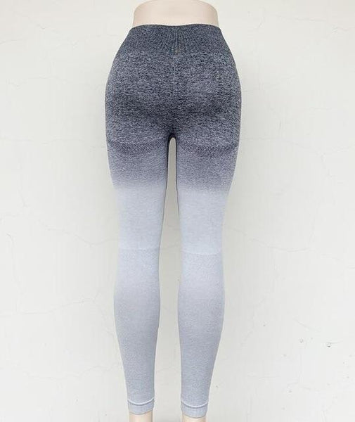Seamless Gym & Fitness Legging Tight for Women - Yesy All Goods