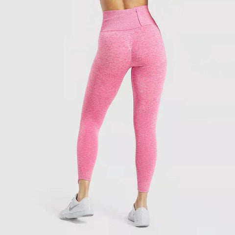 Women Gym & Fitness High Waist Legging with Waistband Zip Pocket - Yesy All Goods