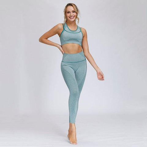 Fitness Gym Seamless Clothing Set Sport Bra with Hight Waist Legging Tight for Women - Yesy All Goods