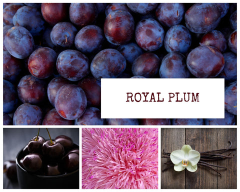 Royal Plum Scented Candle made wCoconut wax.