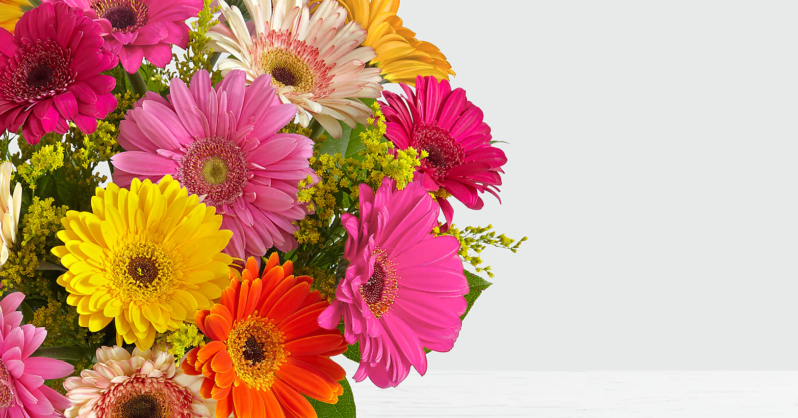 Colorful Gerbera Daisies - Image 3 Of 4