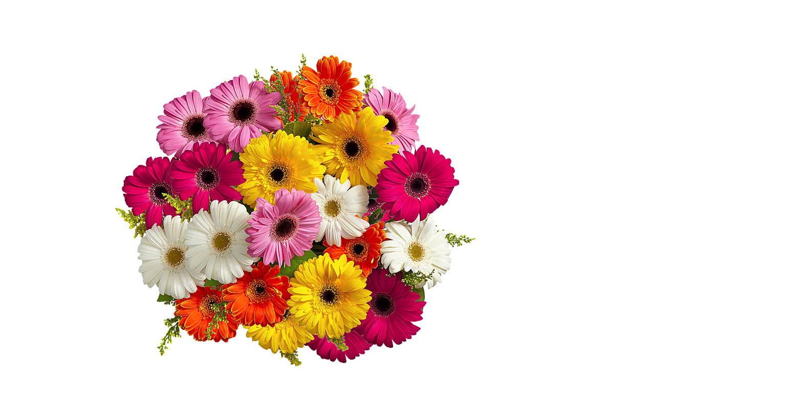 Colorful Gerbera Daisies - Image 2 Of 4