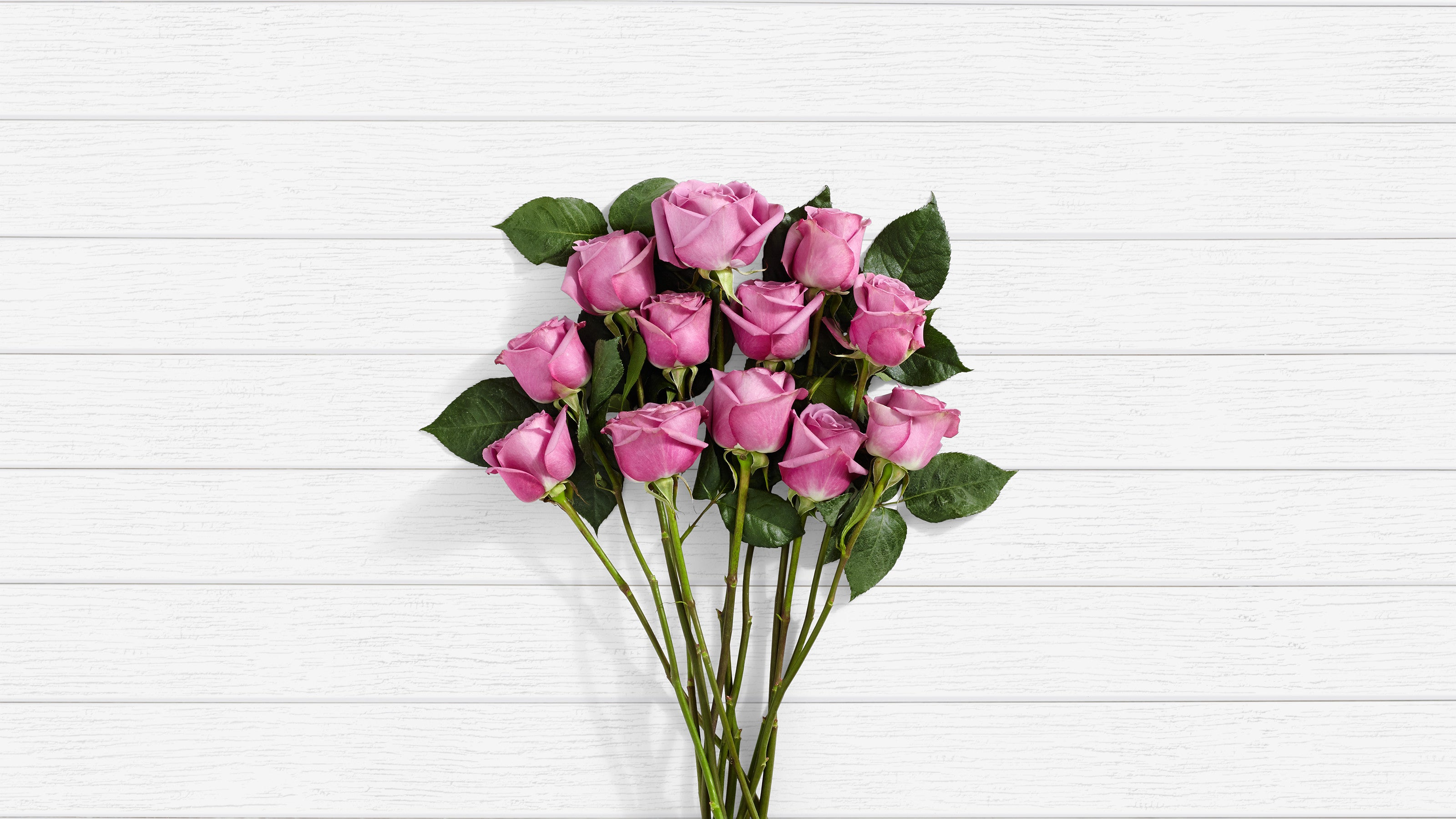 Deals on Mulberry Margarita 12 Stems Of Purple Roses
