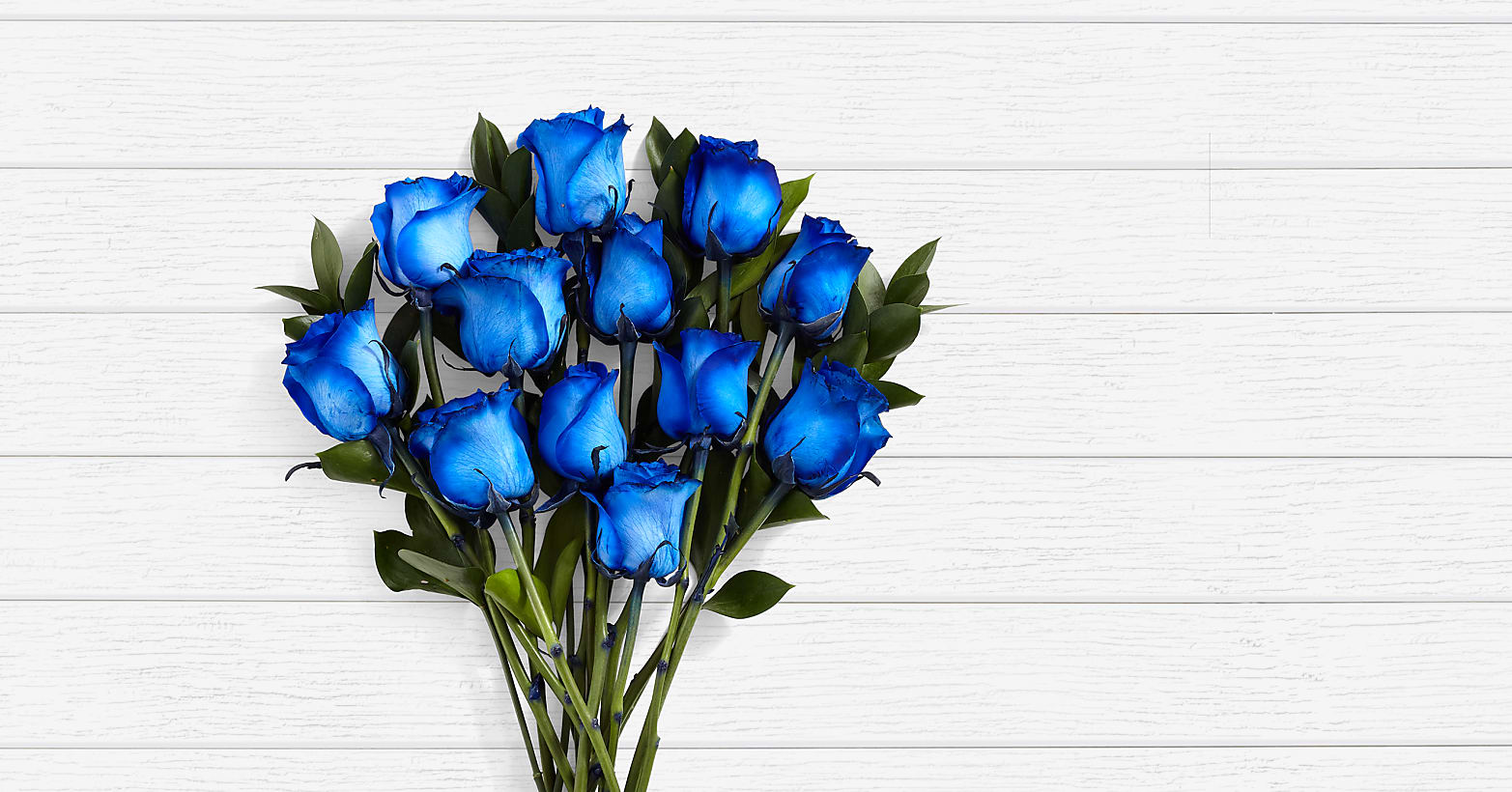 Blue Moon Roses - 12 Long Stemmed Blue Dyed Roses - Image 1 Of 3