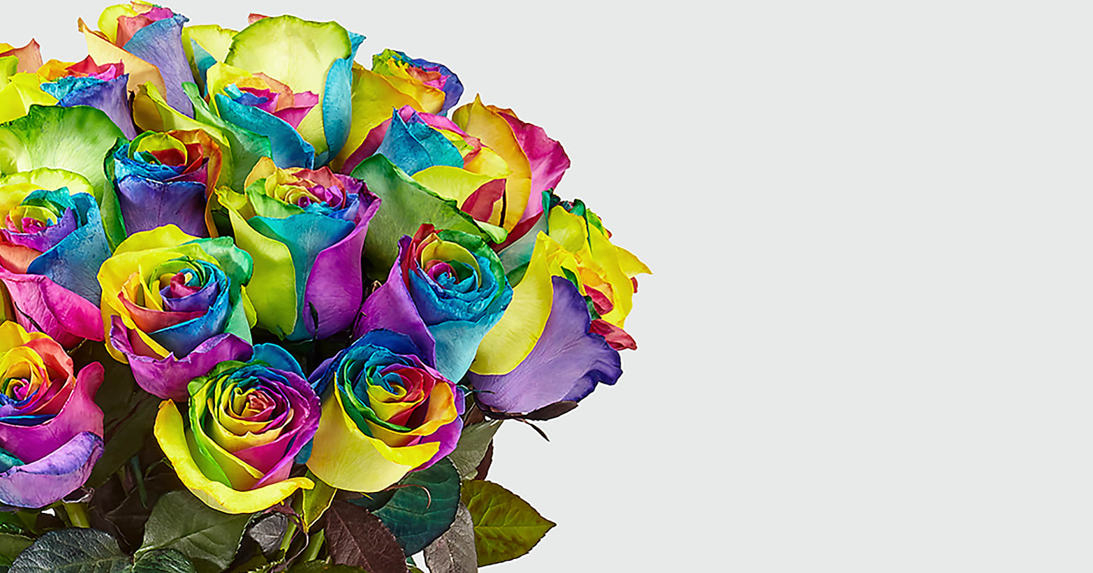 Unicorn Roses–24 Long Stemmed Tie Dyed Roses - Image 2 Of 3