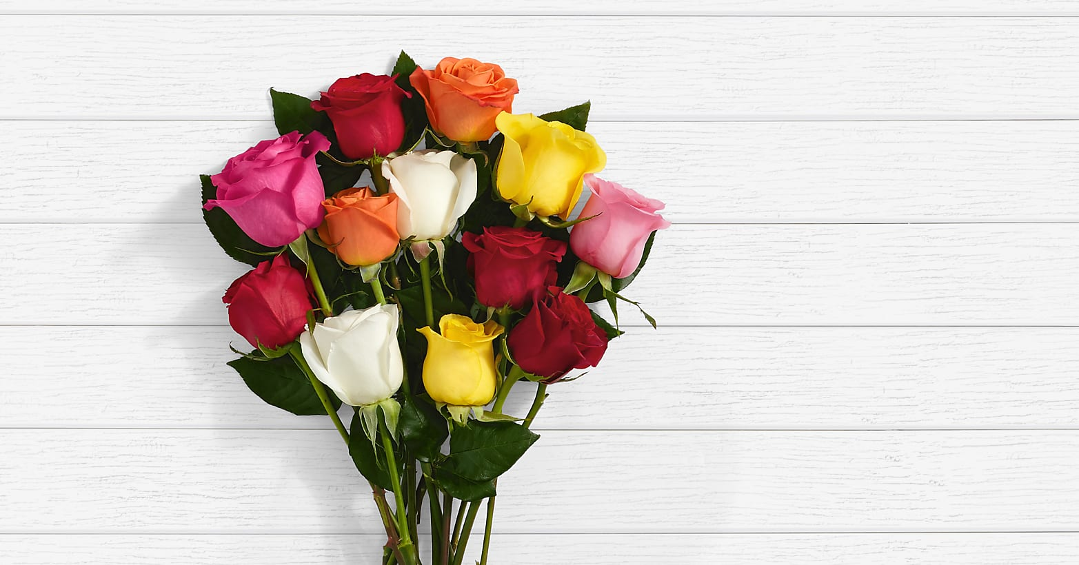 One Dozen Assorted Roses - Image 1 Of 6