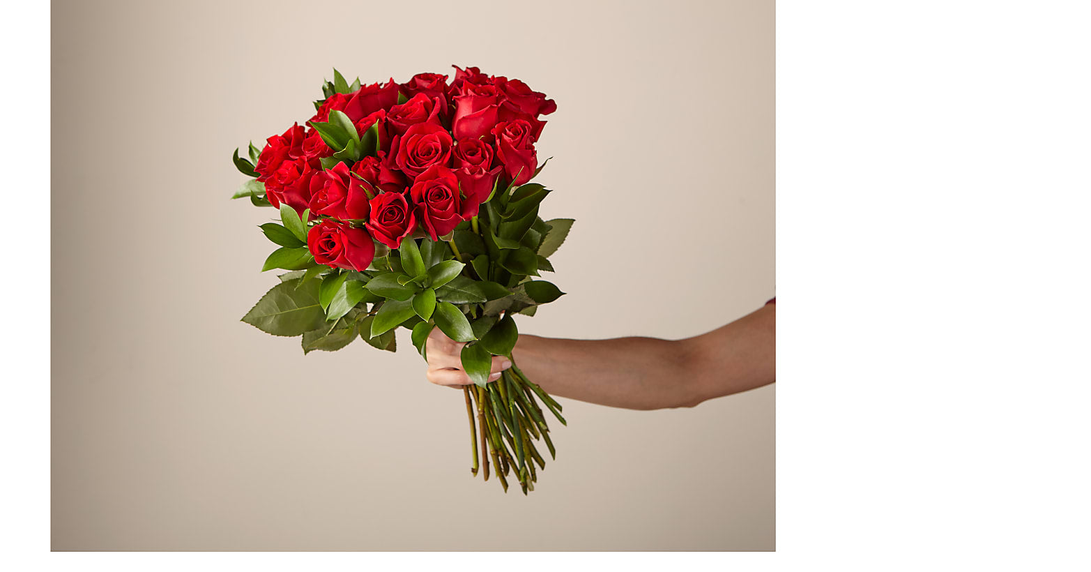 24 Red Roses no vase - Image 1 Of 4
