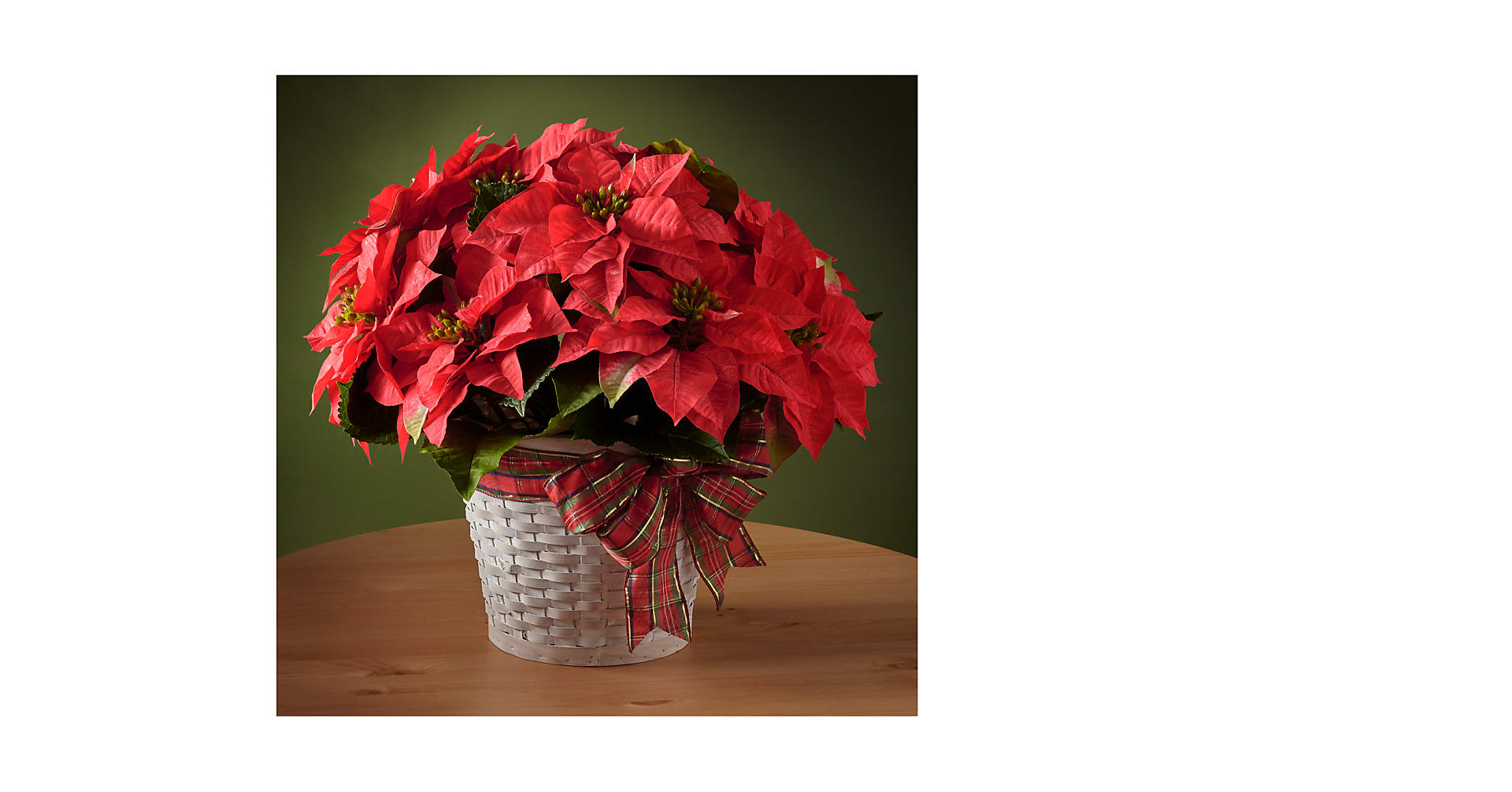 Happiest Holidays Poinsettia - Image 1 Of 2