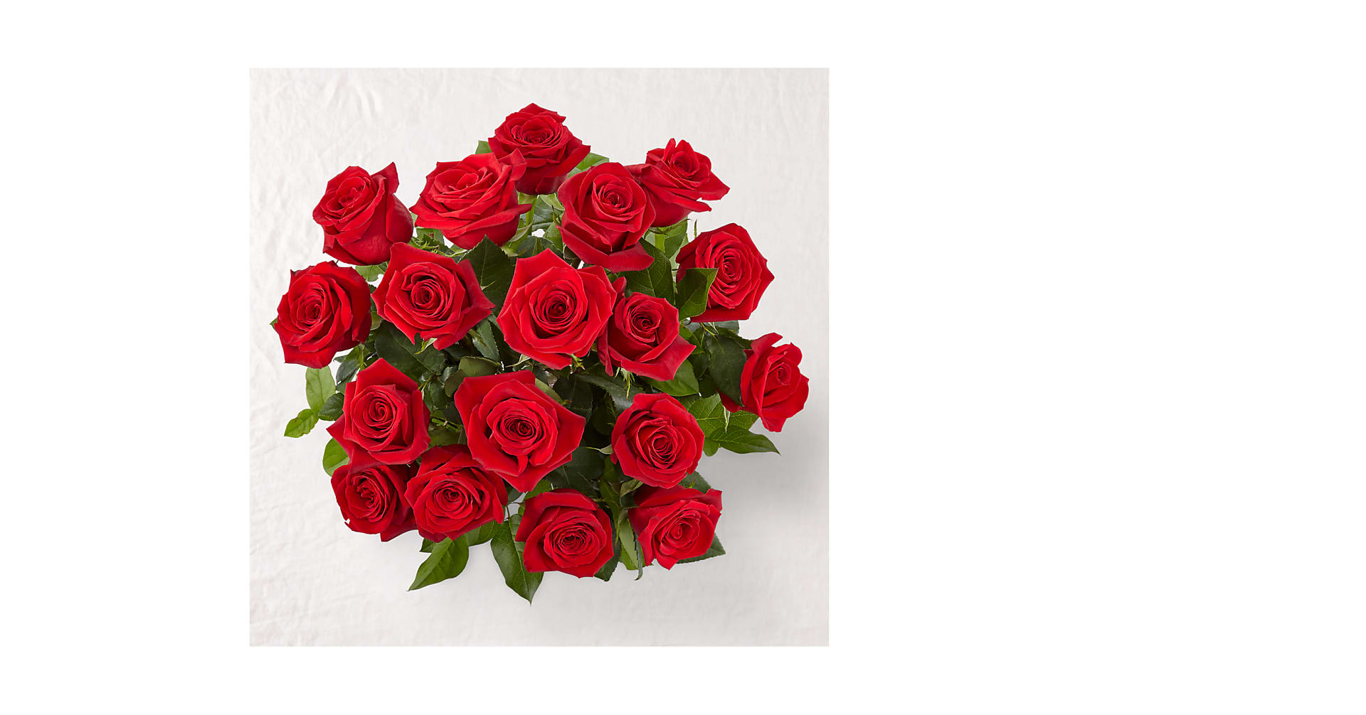 Long Stem Red Rose Bouquet - Image 2 Of 2