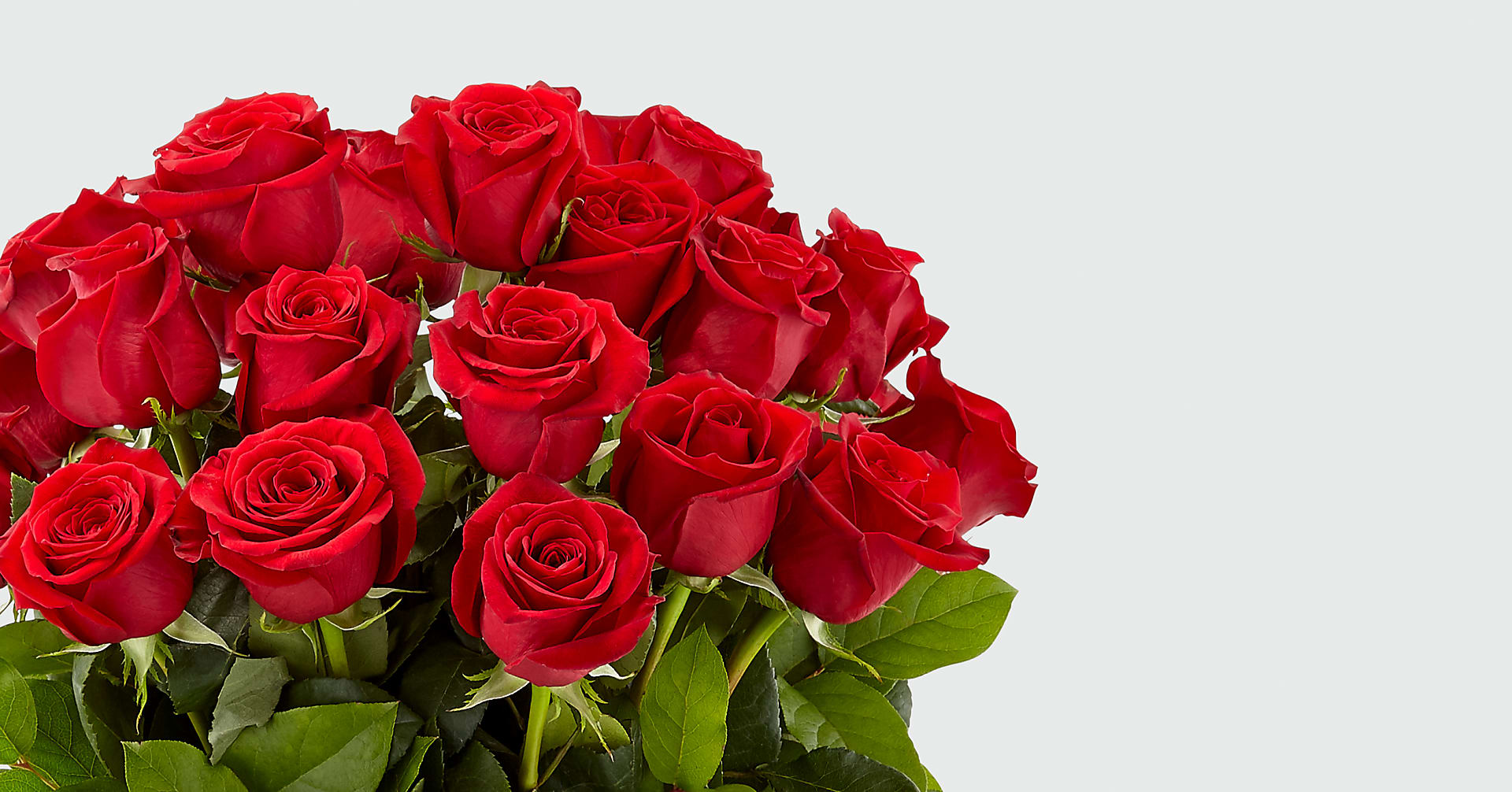 Long Stem Red Rose Bouquet - Image 2 Of 4