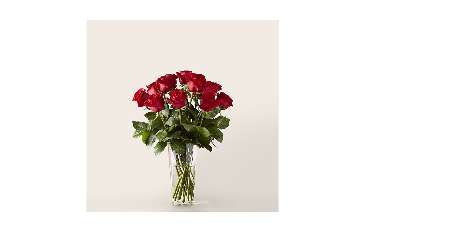 Long Stem Red Rose Bouquet – 12 Red Roses - Image 1 Of 3