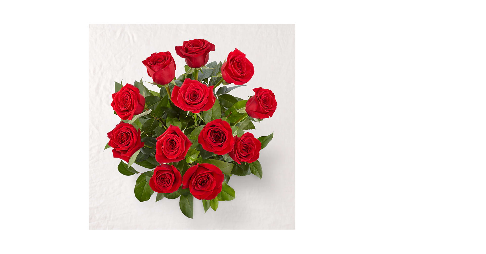 Long Stem Red Rose Bouquet – 12 Red Roses - Image 2 Of 3
