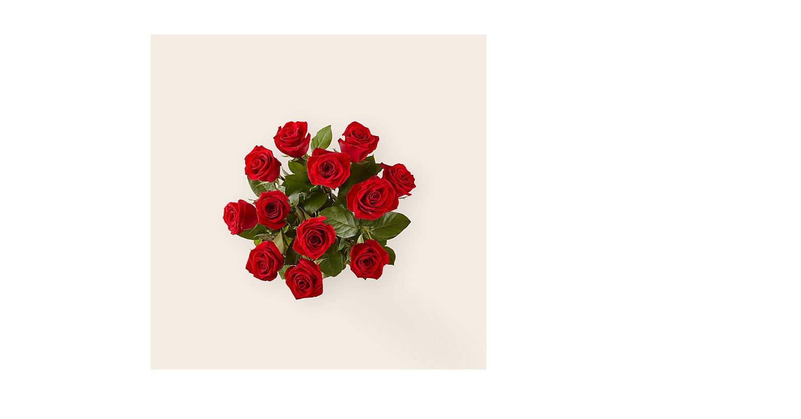 Long Stem Red Rose Bouquet – 12 Red Roses - Image 2 Of 2