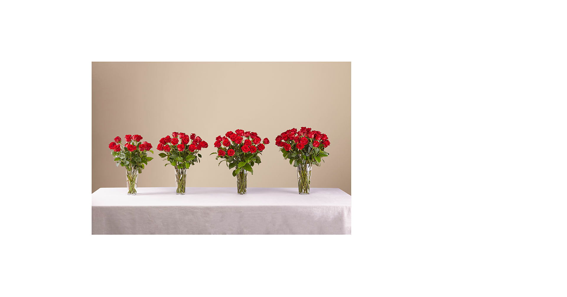 Long Stem Red Rose Bouquet – 12 Red Roses - Image 3 Of 3
