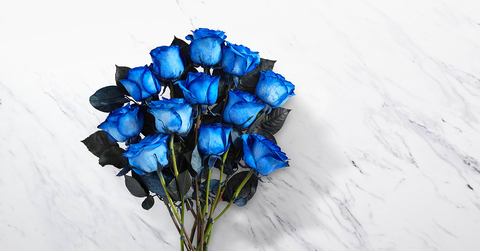 Extreme Blue Hues Fiesta Rose Bouquet - Image 2 Of 2