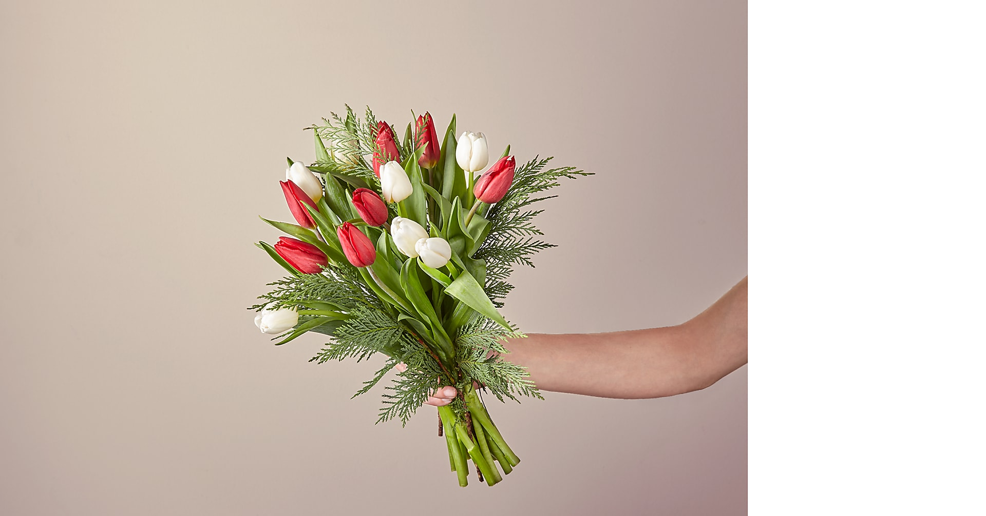 New Traditions Tulip Bouquet - Image 2 Of 3