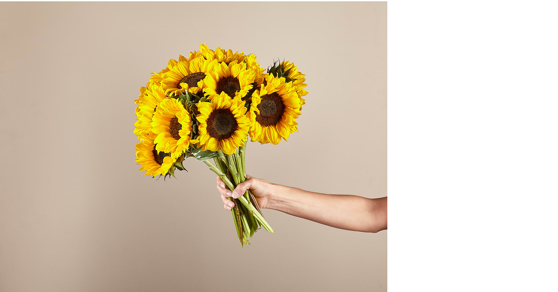 Honey Bee Sunflower Bouquet - Image 2 Of 5