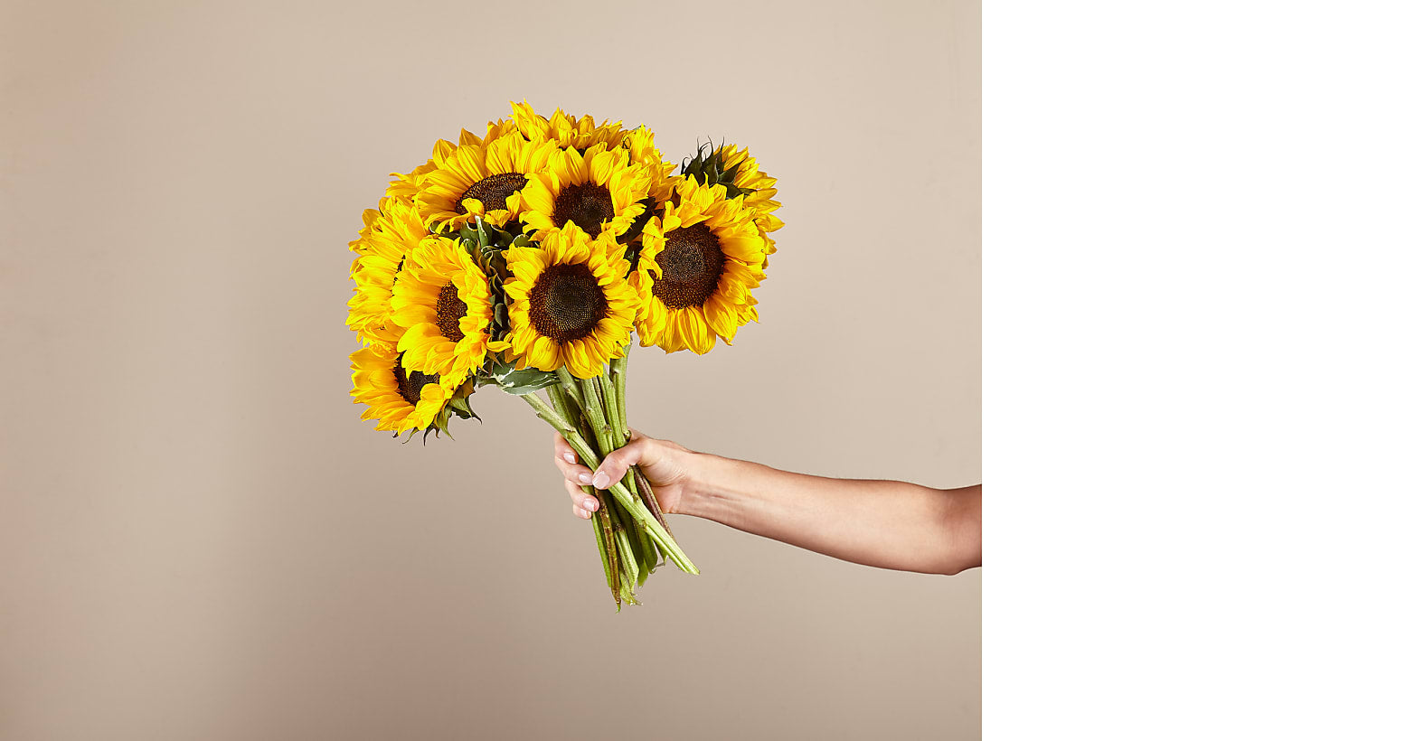 Honey Bee Sunflower Bouquet - Image 2 Of 4